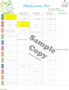 Plan it! Weekly Homeschool Planner (100% customizable! Everything can be changed!)