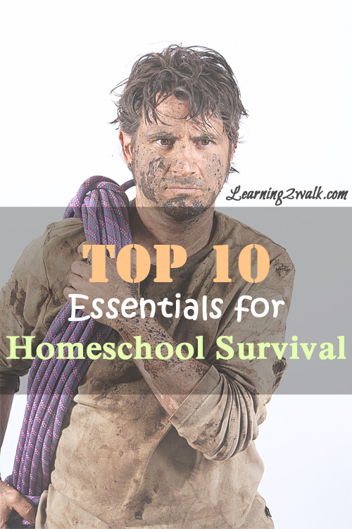 top 10 essentials for homeschooling