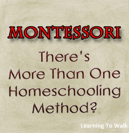 Wait There's More…Montessori- There's More Than One Homeschooling Method?