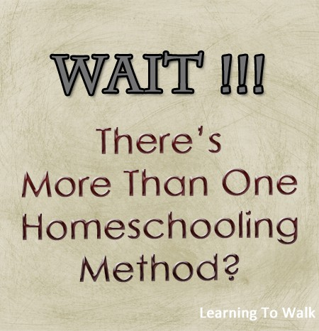 Wait! There's More Than 1 Homeschooling Method?