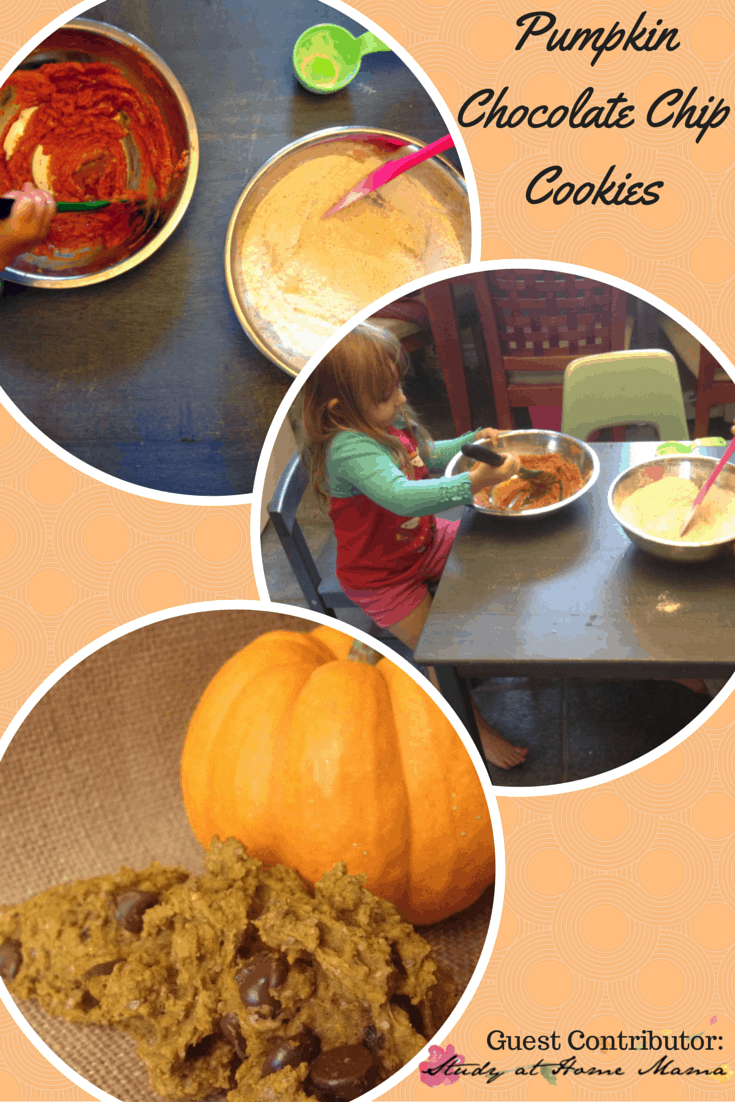 fall activities for preschoolers: pumpkin chocolate chip cookies