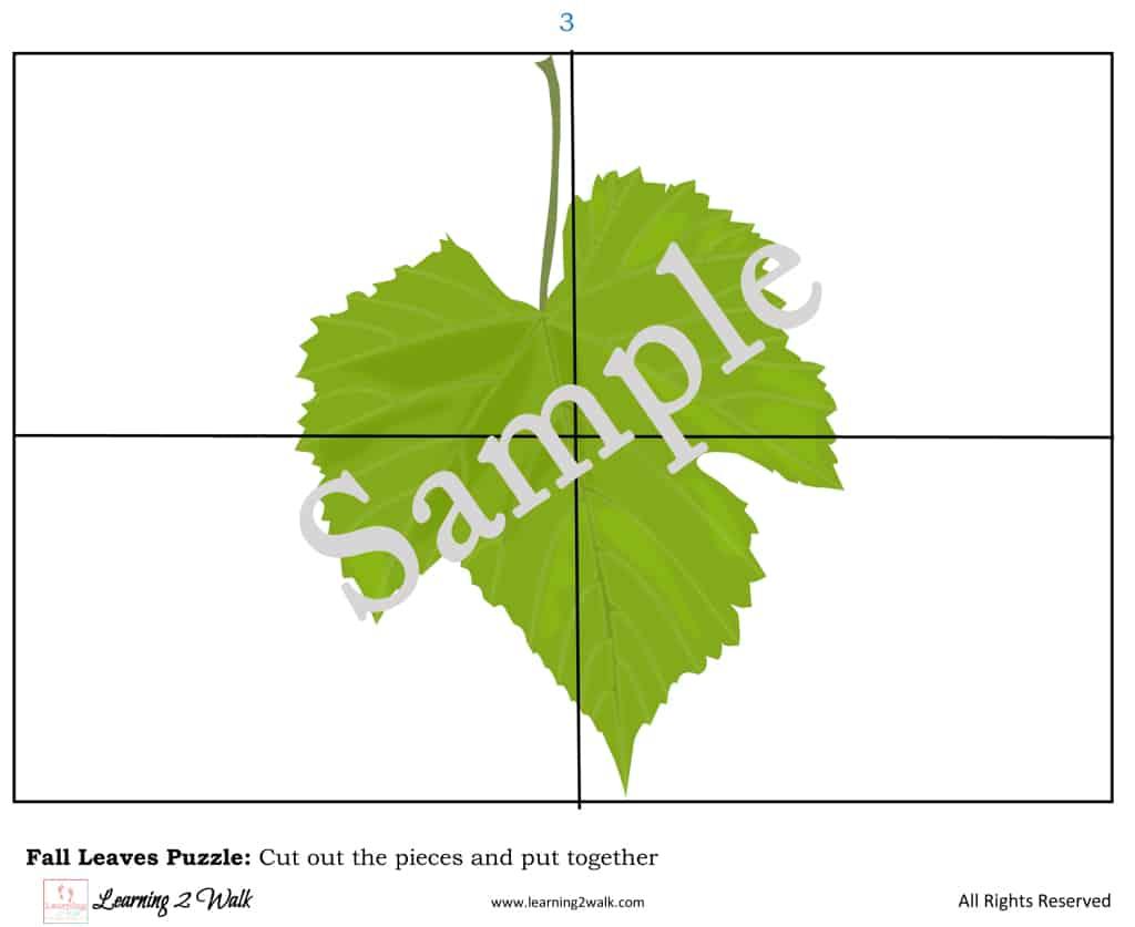 Leaf Themed Preschool Puzzle Sample