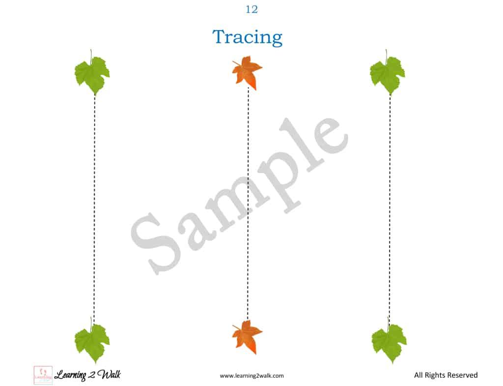 Leaf Themed Preschool tracing sample