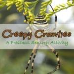 creepy crawlies lesson plan with a preschool sensory activity