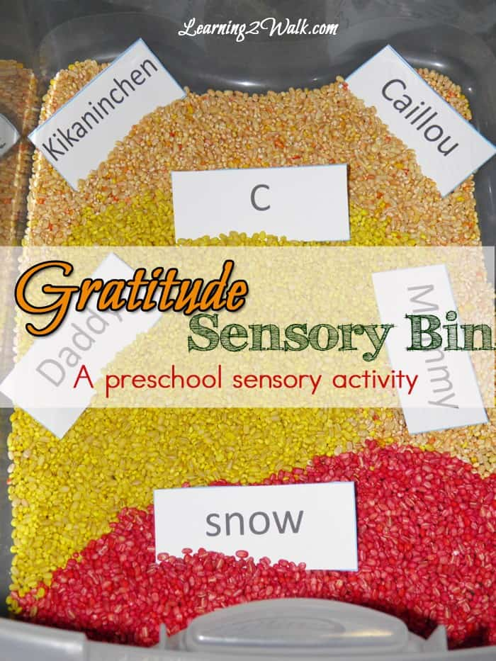 Finding a great sensory activity can feel like you have hit the jackpot. The right sensory bin will allow your kids to learn so many things- all while they are playing. This Gratitude Sensory Bin for preschool kids is a fun way for kids to remember what they are thankful for.