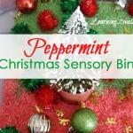 preschool sensory activities:our peppermint christmas sensory bin