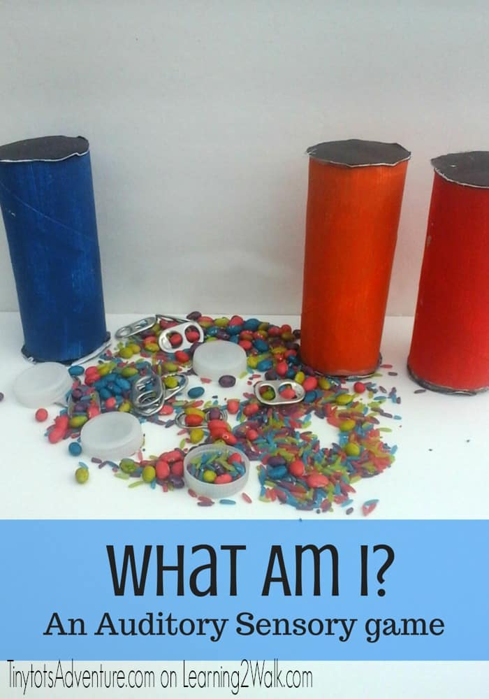 What am I? Auditory Sensory Play: Preschool Sensory Activities