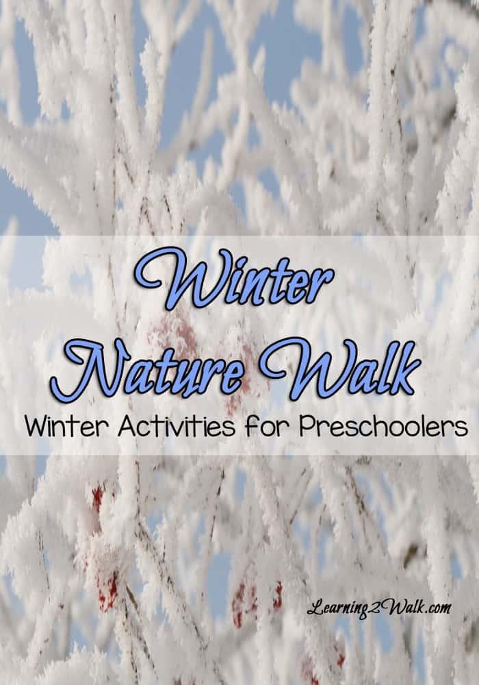 winter activities for preschoolers- winter nature walk