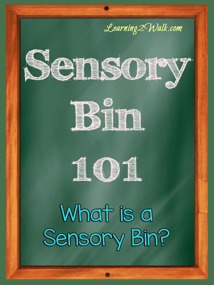 Sensory Bin 101: What is a Sensory Bin?