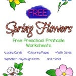 Spring where are you? Searching for free preschool printable worksheets? Try this FREE 33 page pack that includes colour by number, lacing cards, playdough mats and more