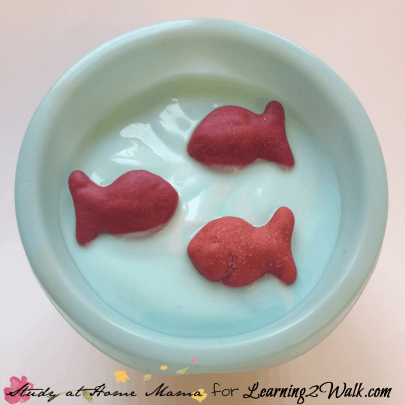 Searching for Dr Seuss a few easy Dr Seuss snacks for preschool? Why not try this healthy preschool snack for One Fish Two Fish?