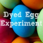 Easter preschool sensory activities- the dyed egg experiment