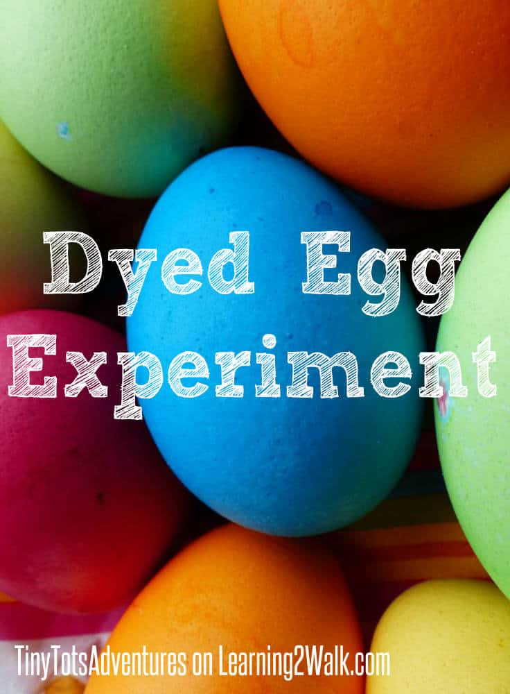 Have you ever dyed an egg? Do you know how? Try this preschool science experiment for a fun sensory play activity.