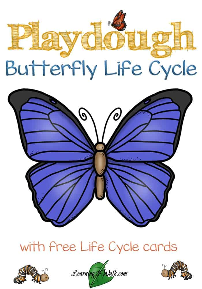 This hands -on playdough kindergarten butterfly life cycle activity cards are perfect for little learners! Don't forget to check out the butterfly life cycle books as well.