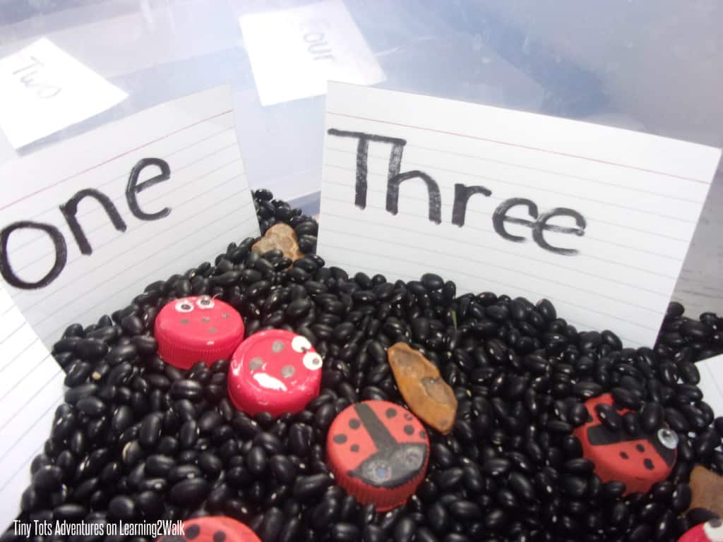 This ladybug sensory bin will help to teach an important preschool math concept: 1 to 1 correspondence while still having them enjoy preschool sensory activities