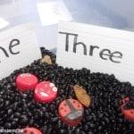 This ladybug sensory bin will help to teach an important preschool math concept: 1 to 1 correspondence while still having them enjoy preschool sensory activities