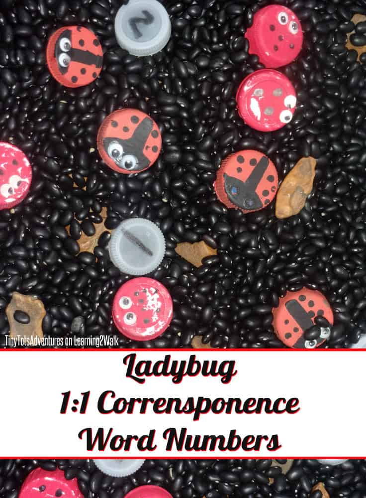This ladybug sensory bin will help to teach an important preschool math concept: 1 to 1 correspondence