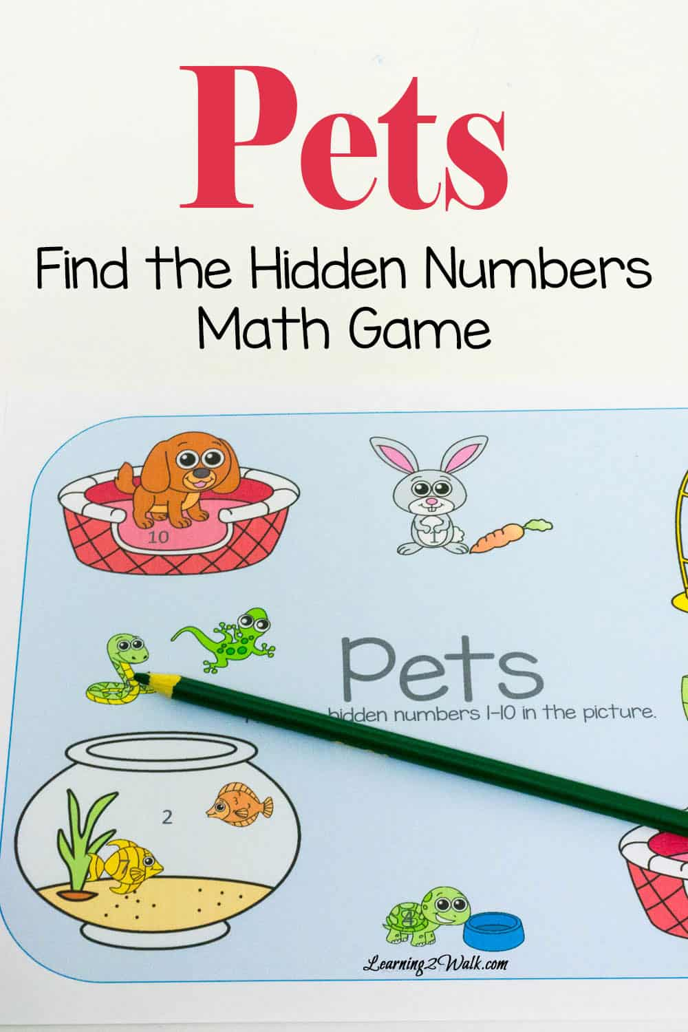 Find the Hidden Numbers- Pets Math Game