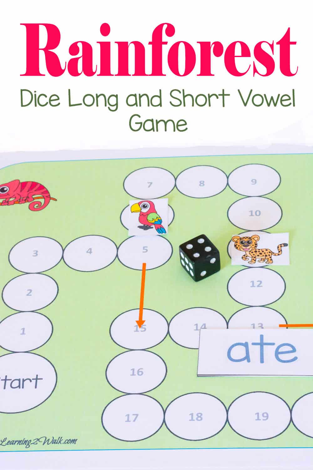 Rainforest Dice Long and Short Vowel Reading Game