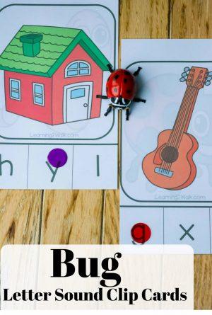 Hands- On, Bug Letter Sound Clip Cards
