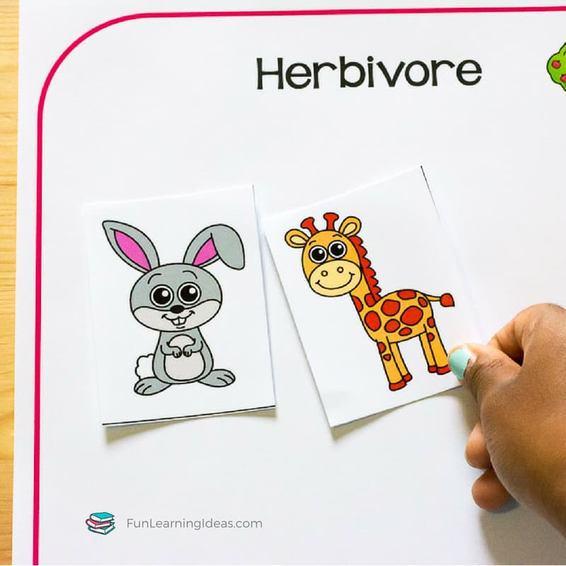Looking for a fun way to expand on Zoey and Sassafras' Dragons and Marshmallows? These sorting activities are perfect for teaching about carnivore herbivore omnivore animals.