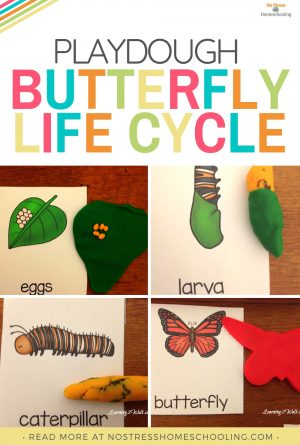 Playdough Kindergarten Butterfly Life Cycle Activities