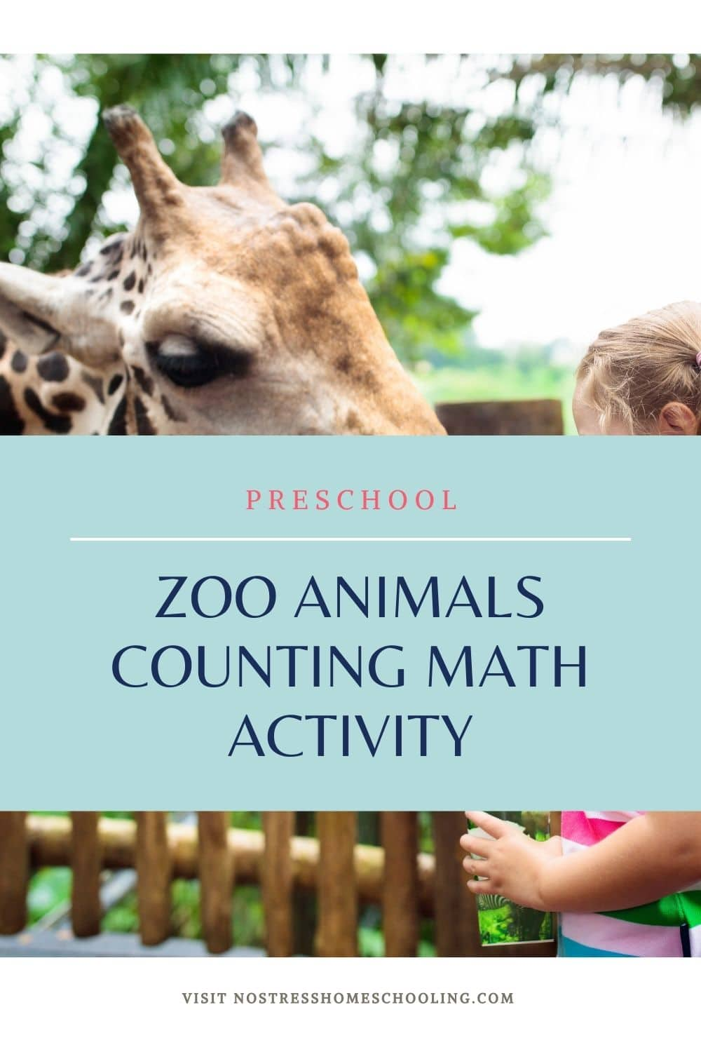 PIC OF PRESCHOOL ZOO ANIMALS COUNTING MATH ACTIVITY BLUE BACKGROUND