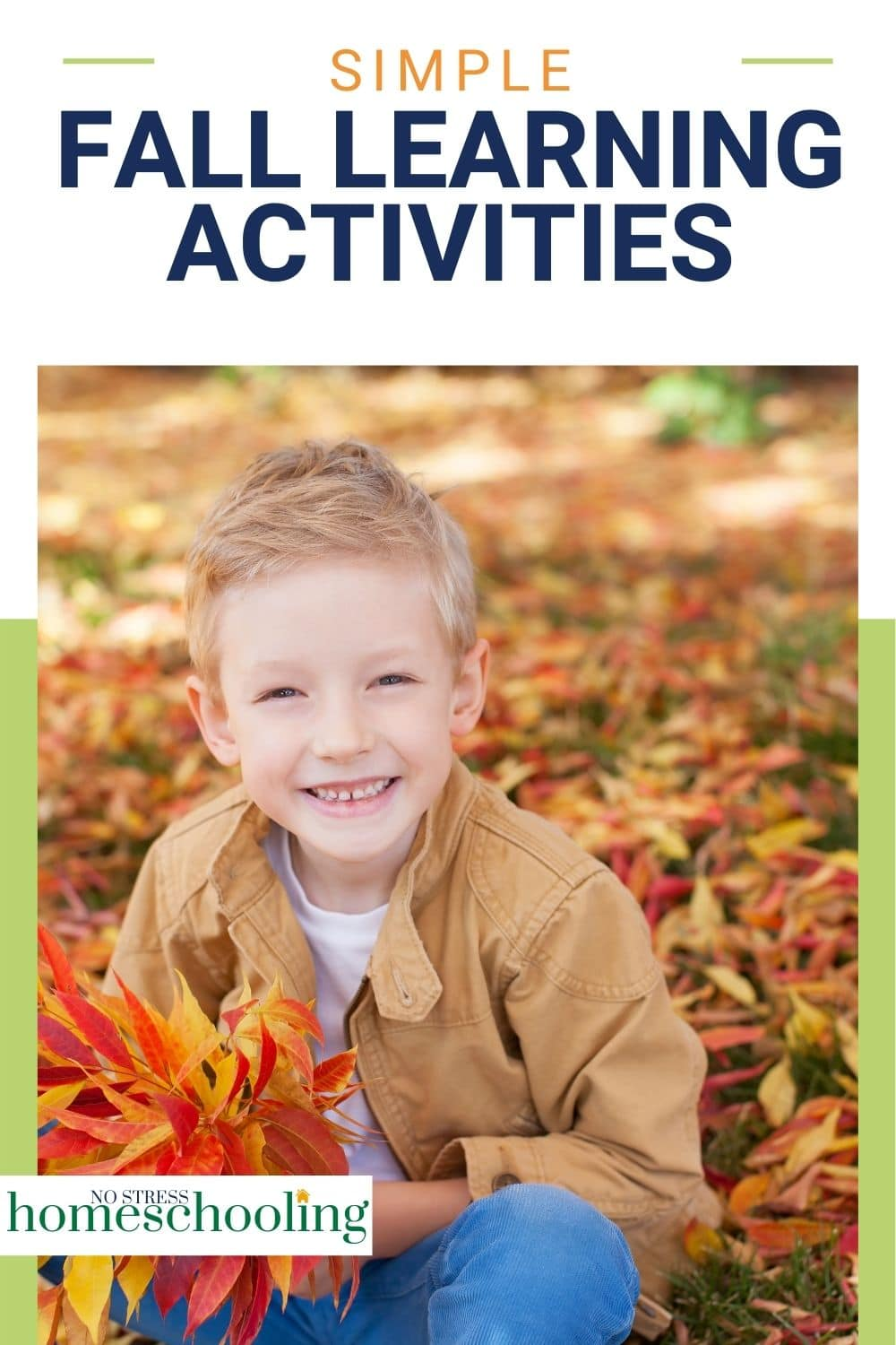 image showing simple fall learning activities