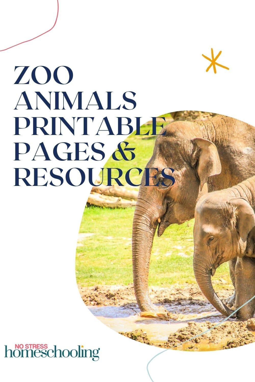 ZOO ANIMALS PRINTABLE IMAGE 1
