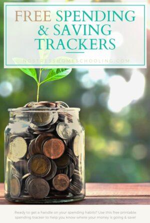 Free Printable Spending Tracker (and Saving Tracker)